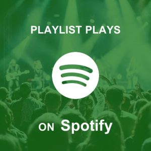 Buy Spotify Playlist Plays on Let Music Plays