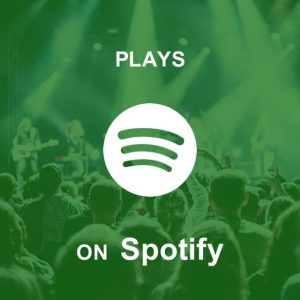 Buy Spotify Plays on Let Music Plays